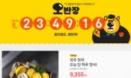 캐릭터 만드니 매출 ↑…SSG닷컴, '오반장' 효과 '톡톡'