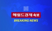[속보] 檢 '울산시장 선거개입' 이진석 靑상황실장 기소
