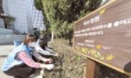대우건설, 서울시·중구청 협력 도시 녹색환경 조성활동