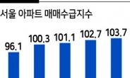 """""""규제하면 할수록 기대감만 커져"""" 더 강해진 서울아파트 매수심리"""