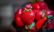 EWG 발표, 잔류 살충제 가장 많은 과일은?[식탐]