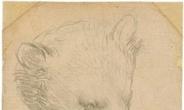 다빈치 '곰의 머리' 경매…최고 187억 낙찰가 예상