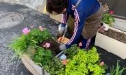 서울시 시민주도 녹화사업으로 나무 10만 5000그루 심어