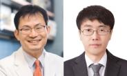 입원환자 10% '급성 신손상'… 분당서울대병원 '급성 신손상 예측 시스템' 개발