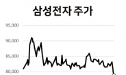 반도체 베팅한 개미 울상…삼성전자·SK하이닉스 연중 최저점 [株포트라이트]