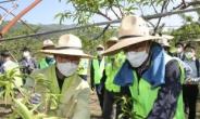 이성희 농협회장, 박범계 법무부장관과 농촌일손돕기 나서