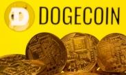 '비트코인·이더리움·도지코인' 등 가상자산 대장주 일제히 하락