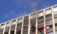 [영상] 5층 화재빌딩서 점프 '괴력의 고양이'