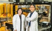 OLED 대체 고효율 '페로브스카이트' 양자점 소재 개발