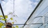 팜한농, 현대로템과 농작업용 웨어러블 슈트 업무협약