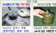 서울 우면산·부산 태종대에도 지뢰가?…지뢰 현황 공개 추진