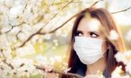 날리는 '꽃가루'에 코로나 바이러스도 퍼진다