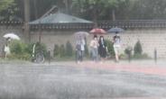 비오는 날, 프라이팬이 더 잘 팔리는 까닭은?[언박싱]