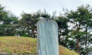 조선의 3대 청백리 박수량의 묘비, 비문 없는 '백비'인 이유