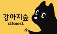 반려견 테마파크 '강아지숲' 16일부터 야간개장