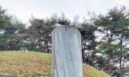 장례비조차 없었던 청백리의 상징 박수량...명종, 청백당·비문없는 백비 '소탈함 기려' [남도종가의 재발견]