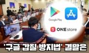 """""""장관이 토종 마켓 밀어주기?""""…논란의 '구글 갑질 방지법' [IT선빵!]"""