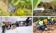한라시멘트 '멸종위기종 서식지 복원' 환경부장관상