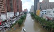 '하늘이 뚫렸다' 1년치 비가 사흘만에 쏟아져…中 정저우서 25명 사망·7명 실종