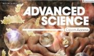 고삐풀린 면역세포 제어하는 펩타이드 개발…자가면역질환 염증 줄인다