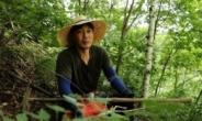 돌연 사라졌던 송종국 근황…두메산골서 농사와 약초 캐며 산다