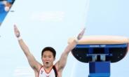 [체조] '도마 달인' 신재환 금메달… 양학선 이어 두번째 '金' 쾌거 [종합]
