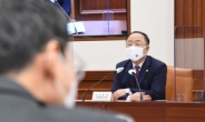 """홍남기 """"빅3 규제혁파, 민간투자 활성화에 미흡…지원과제 중 12.5%에 불과"""""""