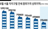 강남구 아파트 전세 중윗값 10억3100만원