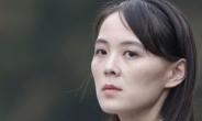 """北 김여정 """"종전선언 나쁘지 않지만…때 적절치 않아""""[종합]"""