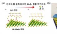 韓 연구진, 자가치유 '2차원 반도체소자' 개발