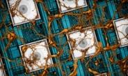 삼성전자, 인간 뇌 닮은 '차세대 뉴로모픽' 반도체 기술 제안