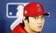 오타니  'MLB 올해의 선수'…아메리칸리그 MVP도 유력