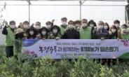 [헤럴드pic] '농협유통과 함께하는 화훼농가 일손돕기'