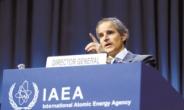 """IAEA 사무총장 """"北, 상상 가능한 모든 핵활동 진행"""""""