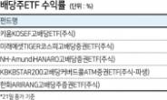 고배당 ETF, 연말 배당시즌 앞두고 수익률 '好好'