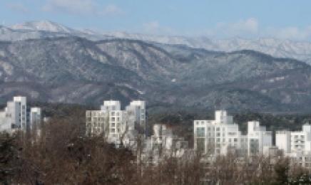 '비규제' 강원까지 튄 집값 불똥…곳곳서 신고가 속출[부동산360]