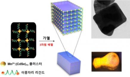 골칫덩어리 이산화탄소를 '반도체 소재'로 바꾼다!