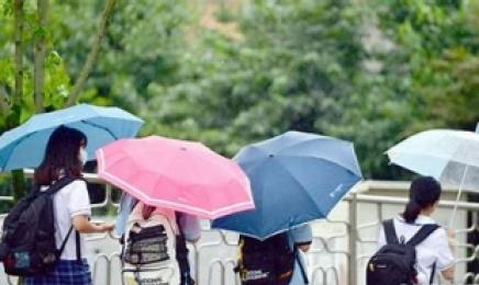 광주·전남, 천둥 번개 동반한 비…최대 40mm