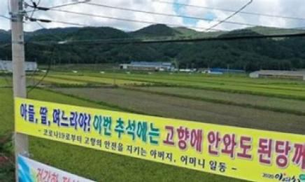 추석, 광주·전남 63명 확진자 추가…명절 타지역 접촉 이동