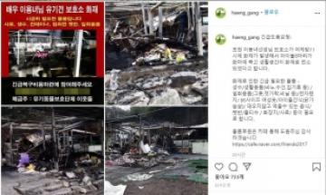 배우 이용녀 운영 유기견보호소서 불…8마리 희생·숙소 전소