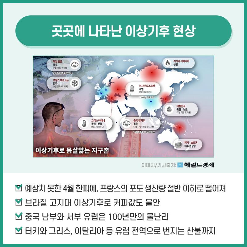 03_코드레드.jpg