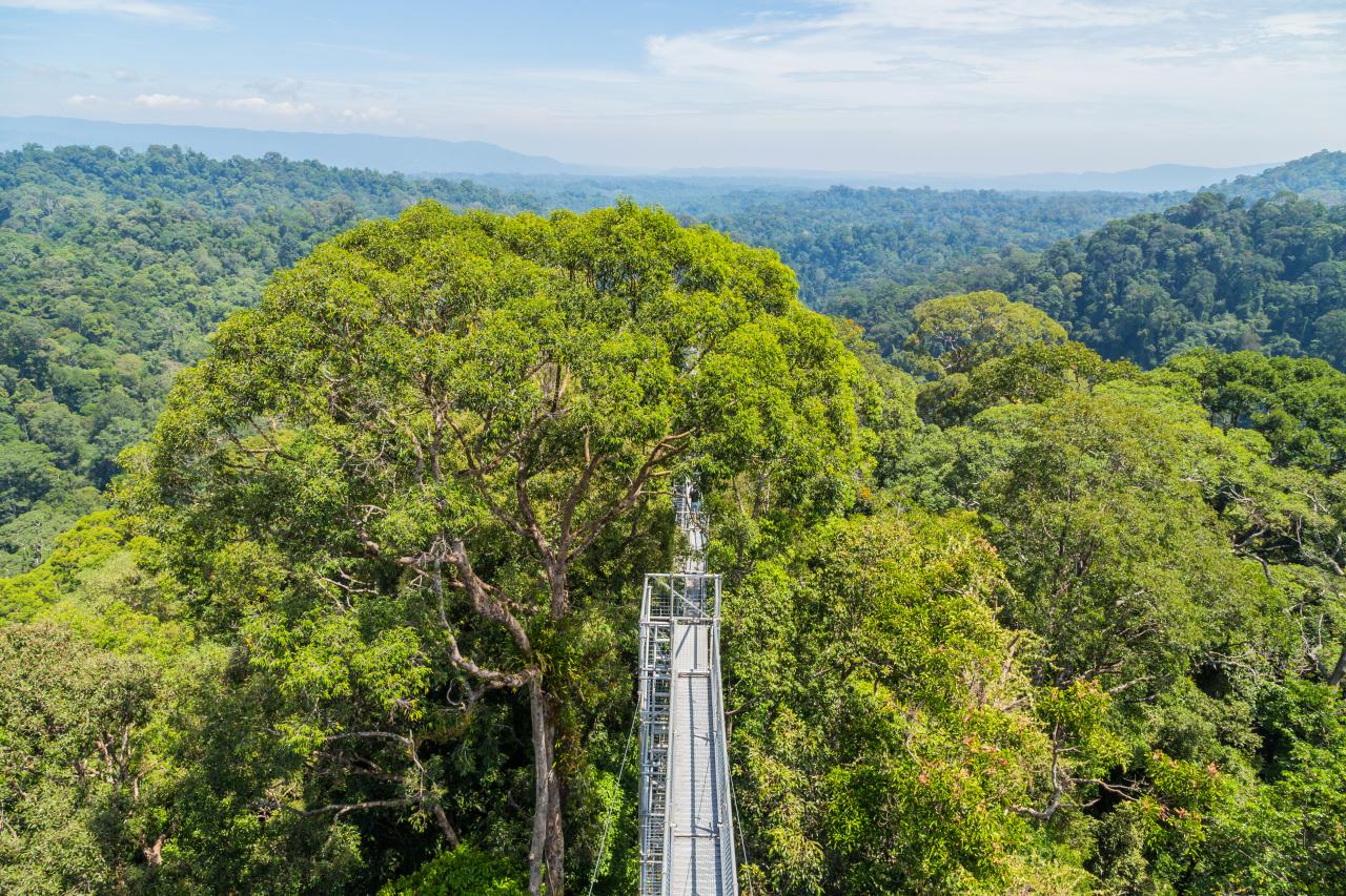 브루나이, 텐부론의 우루텐부론 국립 공원 (ASEAN- 한국 센터)