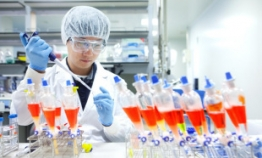 Vaccine developer SK Bioscience plans 2021 IPO