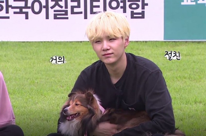 V Report] BTS spends quality time with pets